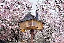 Tree & Tea houses