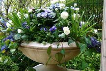 Mijn tuin :-)