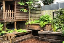 Aquaponic Gardening / Aquaponic gardening is a terrific way to grow your own organic veggies and chemical free fish. / by Stan Smith
