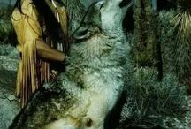 Native American Indian and wolves