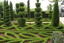 Topiary and espaillier