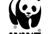 Wwf-  help animals, don't be indifferent