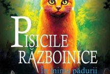 Pisicile Razboinice