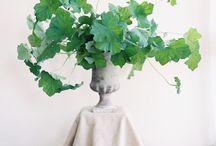 Mariage fleurs/plantes