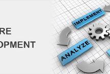 Customized Software Development