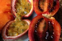 Food on Friday: Passionfruit & tamarillo / To add to this collection just head on over to  http://caroleschatter.blogspot.co.nz/2015/02/food-on-friday-passionfruit-tamarillos.html  Cheers