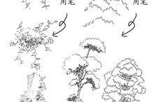 Bomen ontwerp