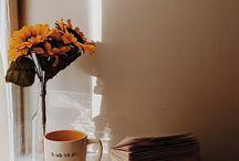 Photography • HOME decor • basic •
