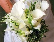 All About the Bouquet / by Marcia Meader