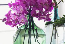 Radiant Orchid / Many hues of radiant orchid!