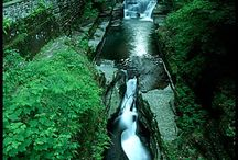 Ithaca is gorges / by Cheryl Croker