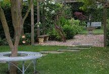 guildford road garden ideas