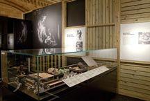 Exhibition/Museum Design