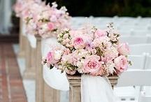 Wedding Halls / The dreamiest of wedding venues.