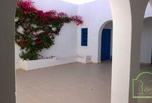 Annonces Immobilières à Djerba / Annonces Immobilières à Djerba - BnB Tunisie