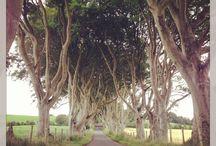 Magic Ireland