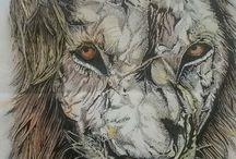animal illustrations / grumpy old lion
