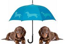 I Love SF Umbrellas / San Francisco Umbrella Company Beautiful and functional umbrellas for the rain-oppressed. Marvelous gifts for dog and cat lovers. Maker of The Dog Park Umbrella. www.sfumbrella.com