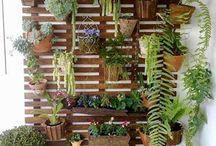 mur vegetal Fleuri