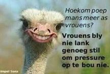 Afrikaanse grappe