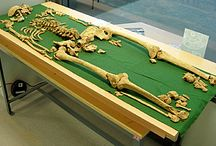 Racton Man / Bronze Age burial with unusual dagger near me