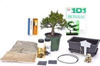 Gift Ideas / Great gifts for bonsai enthusiasts