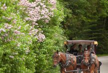 British Landing and CannonBall Inn Wedding Mackinac Island, Michigan Photo by Paul Retherford