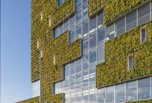 green façades