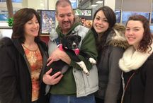 Adopted Alumni / All of our wonderful pups and dogs who have already found their Furever homes, with their new owners!  www.facebook.com/ruffhousealumni