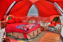 Glamping Ideas / by Laura Seabolt