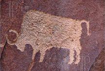 Cave & Rock Art