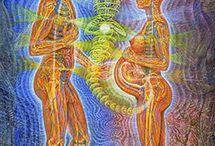 Alex Gray psychedelic art
