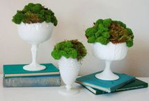 DIY projects to try / by Cathy Schmidt