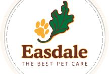 Easdale: the best pet care / Easdale assures high quality and value with our pet boarding, Garden Cattery, bathing and grooming. We treat your pet like an individual-- NOT like one of the pack!  Unique activities include trail hikes on our wooded 4 acres, one on one attention, Ball Park Play and PawPaint Art Classes!  Our website offers online reservations, video tour, rates and services, FAQ's to prepare your pet for boarding, and much much more.