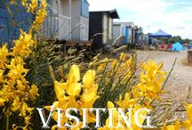 Articles and blogs about Whitstable