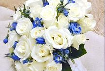 Oceana white cream wedding