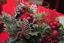 Christmas / by Patty Chapman