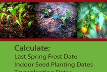 Gardening. Permaculture, Organic Gardening