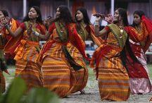 Festivals & Culture