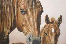Pferde für meine Mädels