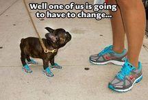Nike a zwierzęta