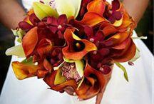 Floral Arrangements / by Gill Suich
