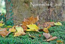 NovemberLaub / Dies ist eine Pinnwand von Verkäufern der Gruppe Dawanda Likes Deutschland. Hier findest Du einzigartige handgemachte Produkte zur Dawanda-Farbaktion NovemberLaub