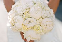 bridal oasis / planning for that special day? let us share with you what we love about weddings, brides, and beauty. and add some Taylor Stone to your bridal oasis!