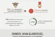 infografikák