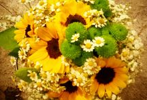 creazioni bouquet  by Francy