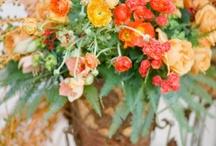 Wedding flowers / by Naomi Newman