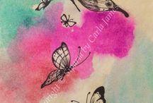 Di. Farfalle