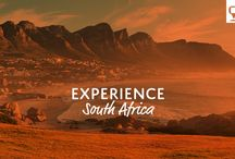 Experience South Africa / Go on safari with one of our tours to majestic South Africa