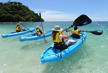 Water Activities / Swimming pools and the sea alike offer the opportunity to get fit doing various fun activities. Rent kayaks and sailboats to explore the ocean, learn how to scuba dive, snorkel or take part in pool sporting activities to enjoy the outdoors. http://www.healthandfitnesstravel.com/watersports-holidays